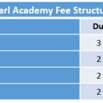 Pearl Academy Fee Structure